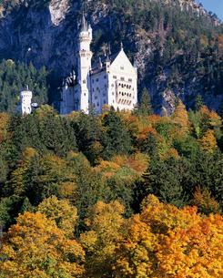 ノイシュバンシュタイン城の秋の写真素材 [FYI00364898]