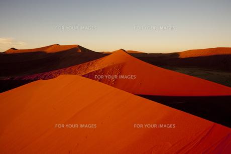 ナミブ砂漠の朝の素材 [FYI00364907]