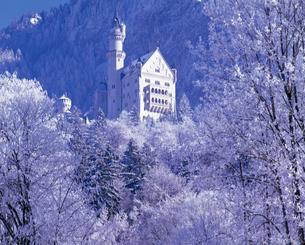 霧氷のノイシュバンシュタイン城の写真素材 [FYI00364910]