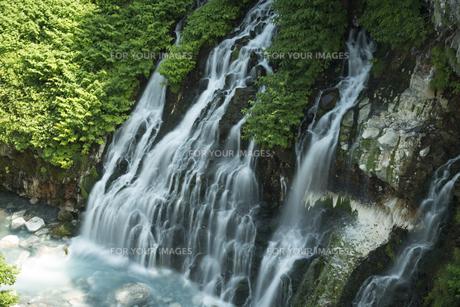 美瑛白金の白髭の滝の写真素材 [FYI00365127]