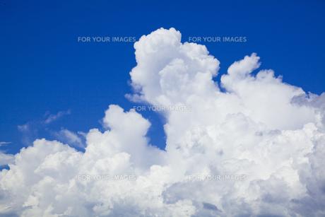 アマゾン川上空の雲の素材 [FYI00365795]