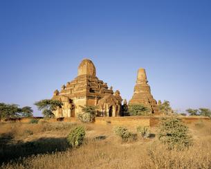 ミャンマーのバガン遺跡の写真素材 [FYI00365909]