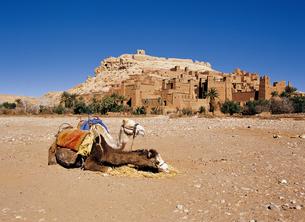 モロッコのアイトベンハッドゥの写真素材 [FYI00366386]