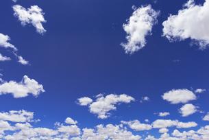 青空に浮かぶ白い雲の素材 [FYI00366664]