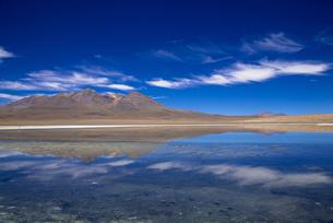 アルティプラーノ平原のカニャパ湖の写真素材 [FYI00366962]