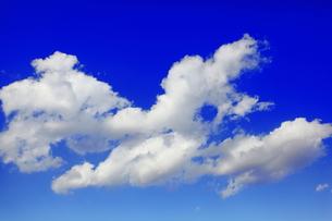 青空と白い雲の写真素材 [FYI00367266]