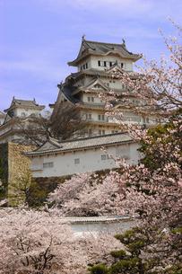 姫路城の写真素材 [FYI00367273]