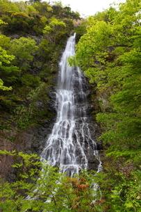 天滝渓谷の写真素材 [FYI00367284]