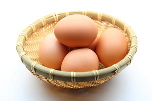 卵の写真素材 [FYI00367289]
