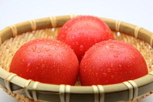 トマトの写真素材 [FYI00367338]
