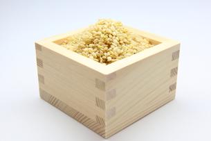 玄米の写真素材 [FYI00367339]