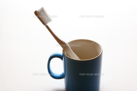 歯ブラシとカップの写真素材 [FYI00367348]