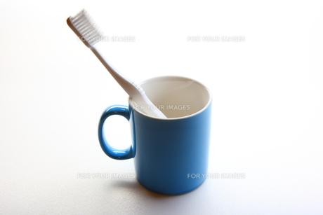 歯ブラシとカップの写真素材 [FYI00367352]