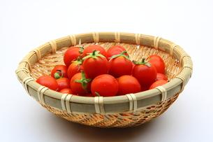 トマトの写真素材 [FYI00367358]