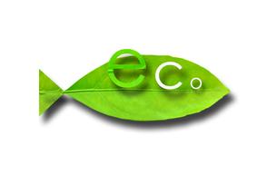 Eco Fishの写真素材 [FYI00367457]