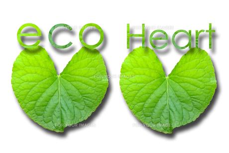 Eco Heartの素材 [FYI00367470]