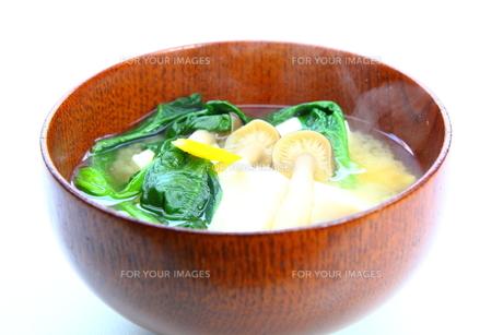 味噌汁の写真素材 [FYI00367503]