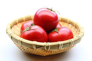 トマトの写真素材 [FYI00367583]