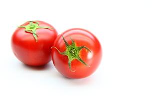 トマトの写真素材 [FYI00367585]
