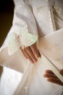花嫁と蝶の写真素材 [FYI00367722]