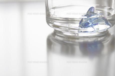 ガラス02の写真素材 [FYI00367773]