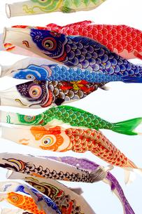 鯉のぼり01の写真素材 [FYI00367832]