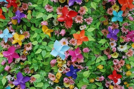 造花と鮮やかな風車の写真素材 [FYI00367949]