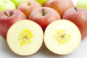 りんごの写真素材 [FYI00367953]
