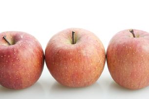 りんごの写真素材 [FYI00367960]