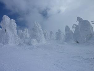 樹氷(モンスター)の写真素材 [FYI00368025]