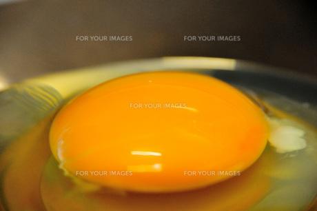 輝く生卵の写真素材 [FYI00368067]