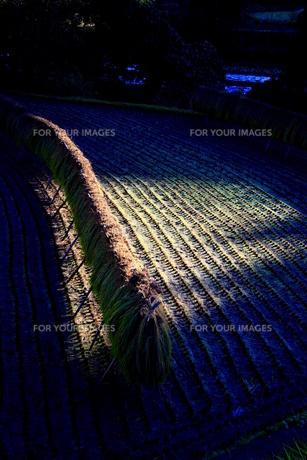 光の魔術の写真素材 [FYI00368101]
