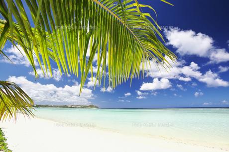 グアム島のタモンビーチの素材 [FYI00368217]
