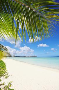 グアム島のタモンビーチの素材 [FYI00368221]