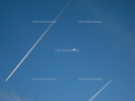 飛行機雲の写真素材 [FYI00368276]