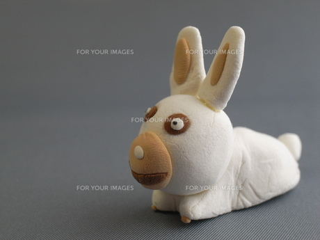 ウサギの写真素材 [FYI00368325]