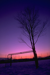雪の日の夕暮れの写真素材 [FYI00368450]