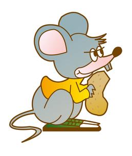 ピーナツとネズミの写真素材 [FYI00368493]