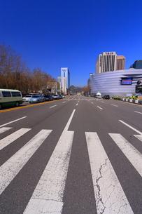 韓国の横断歩道の写真素材 [FYI00368524]