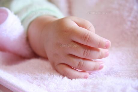 赤ちゃんの手の写真素材 [FYI00368526]