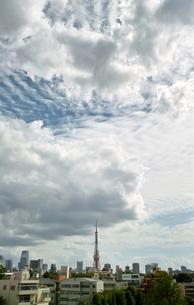 東京タワーの写真素材 [FYI00368568]