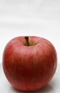 ふじリンゴ1個の写真素材 [FYI00368591]