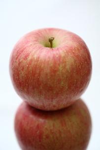ふじりんごアップの写真素材 [FYI00368593]
