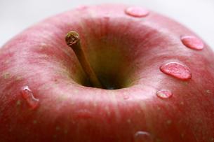 ふじりんごアップの写真素材 [FYI00368608]