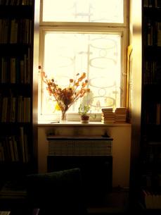 花瓶のある古本屋の窓辺の写真素材 [FYI00368638]