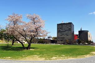 北九州市の勝山公園の写真素材 [FYI00368767]
