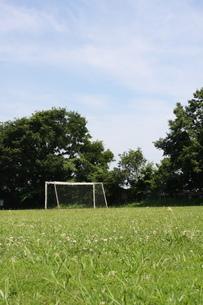 芝のサッカーグランドの写真素材 [FYI00368949]