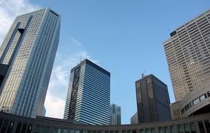 都庁広場から新宿高層ビル群の写真素材 [FYI00369858]