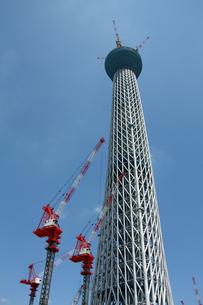 東京スカイツリー工事中の写真素材 [FYI00369861]