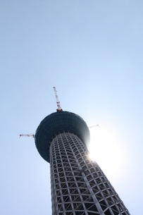 そびえたつ東京スカイツリーの写真素材 [FYI00369862]